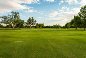Course Tour Image